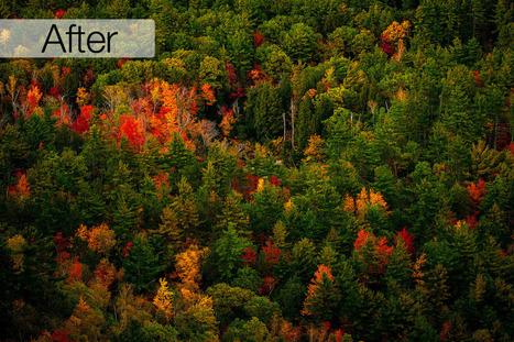 Lightroom 5 Presets: Fall/Autumn Color Boost - Lightroom Killer Tips | Lightroom | Scoop.it