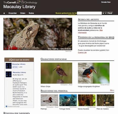 Educación tecnológica: Biblioteca de sonidos de animales | Todo Biología | Scoop.it