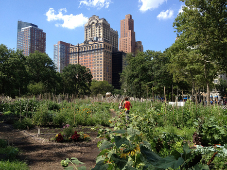 An NYC Garden Oasis: Battery Urban Farm · Eco-Chick | Vertical Farm - Food Factory | Scoop.it