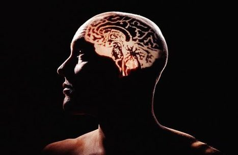 New Study: Stoner Memories Are Just Fine, Thanks | Beckley News : Cannabis - Marijuana | Scoop.it