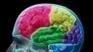 Découvre l'intérêt des neurosciences pour le management - Gadz.Tv | neuroscience- éducation | Scoop.it