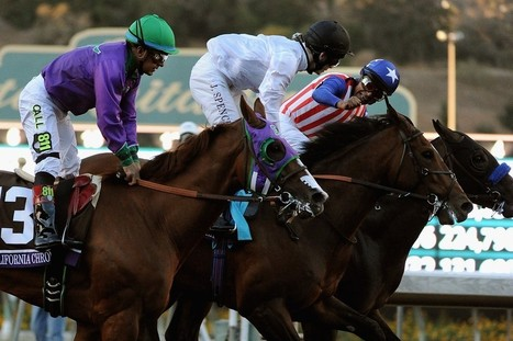 Bayern Wins the Breeders' Cup Classic | Horse Racing News | Scoop.it