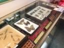 All-Bug Insectarium Philadelphia Museum Offers Creepy Amusement | COOL POSTS | Scoop.it