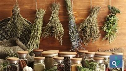 الأعشاب بديل علاجي شائع للسكري - مرض السكري | أمراض و علاج | Scoop.it