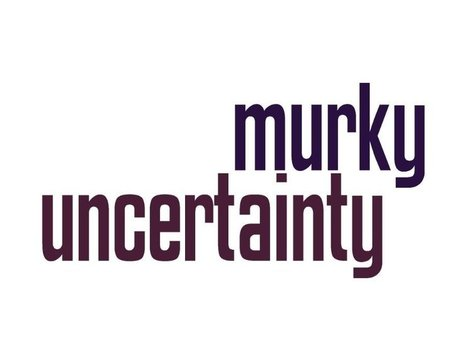 Getting Past Murky Uncertainty | Coaching Leaders | Scoop.it