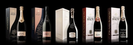 Odyssey Days by Champagne Duval-Leroy | Vitabella Wine Daily Gossip | Scoop.it