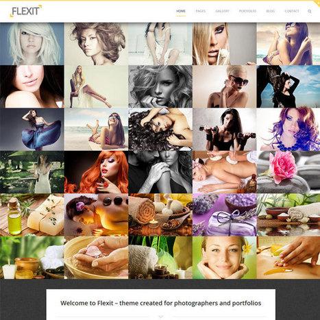 Flexit WordPress Theme | WordPress Theme Download | Best WordPress Themes 2013 | Scoop.it
