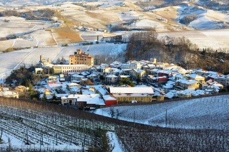 The 12 Wines of Christmas — Day 10: Barolo | Living La Dolce Vita | Scoop.it