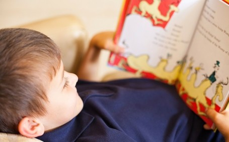 Teachers: new reading test for infants 'is a waste of time' - Telegraph.co.uk | Professional development of Librarians | Scoop.it