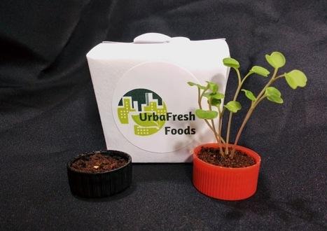 Earth Day 2014 ... Grow a Garden in a Bottle Cap | FoodHub Las Vegas | Scoop.it