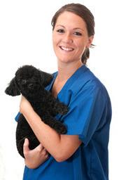 BSAVA | Free Student e-Membership | Veterinary Students | Scoop.it