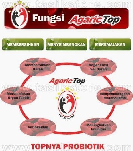 AgaricTop ~ AgaricTop, Harga, Jual, Murah, Agen, agarictop.org | bestagaric | Scoop.it