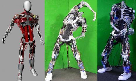 Kenshiro: le robot fait de muscles et d'os artificiels   Semageek   Tecknolik   Scoop.it
