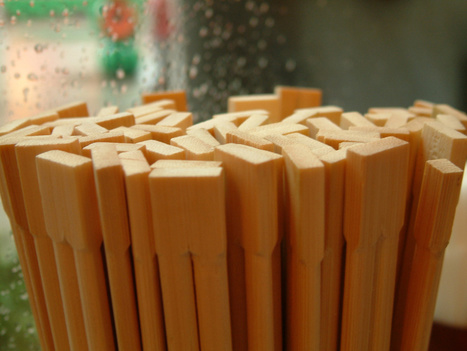 Chinese forests now just chopstick factories in waiting | Sustain Our Earth | Scoop.it