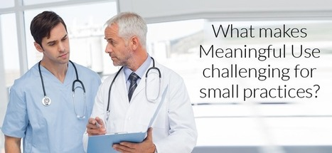 What makes Meaningful Use challenging for small practices? | Electronic Health Records Implemetation. | Scoop.it