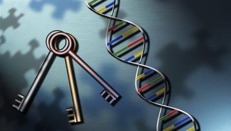 ΤΟ ΒΗΜΑ - Τα γενετικά μυστικά του καρκίνου - science | Polymerase | Scoop.it