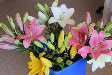 Easy Flower Delivery | Liliesinatube | Lili Flowers | Scoop.it
