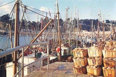 L'histoire du port, de la grande pêche à la plaisance , Binic 24/07/2012 - ouest-france.fr   GenealoNet   Scoop.it