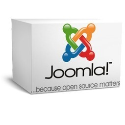 Get Realistic View For Your Website By Hiring Joomla Developers | Business | Scoop.it