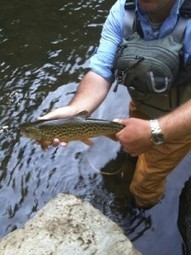 Branding Lessons From Fly Fishing   Strengthening Brand America   Scoop.it