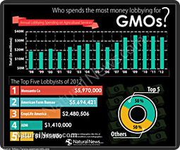 Over $30M spent last year on lobbying to keep GMOs hidden in foods   Gov & Law   Scoop.it