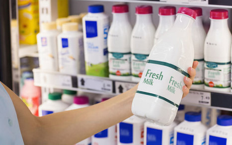 New Zealand GDT Auction Prices Surge 11.4% | Évolution du marché du lait - Global Dairy Market News and outlook | Scoop.it