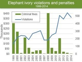 WILDLIFE: Harsh penalties rare in trafficking cases | Wildlife Trafficking: Who Does it? Allows it? | Scoop.it