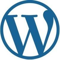 Wordpress website development   Web Development India   Scoop.it