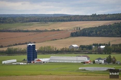 Les producteurs de la région espèrent un meilleur contrôle d'importation des protéines de lait | Questions de développement ... | Scoop.it
