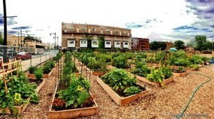 10 Steps to Starting a Community Garden | Permaculture - [creatively] re-design our communities, environment and our behavior | Scoop.it