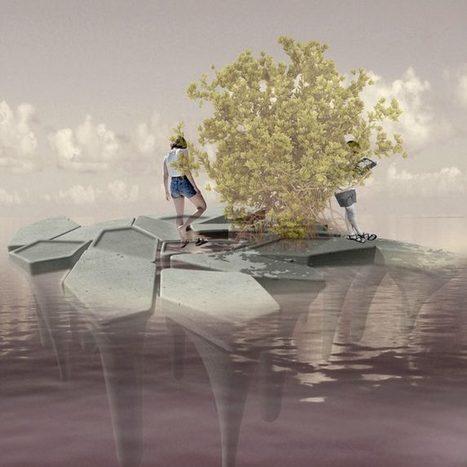 En Colombie, des blocs de béton flottant vont permettre de repeupler les forêts de mangrove sur les littoraux | innovation-beton | Scoop.it