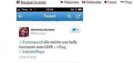 Twitter : une militante du PG harcelée par l'extrême droite | France | Scoop.it