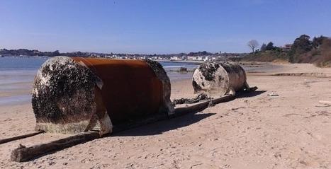 El temporal dejó en playas de Ares dos grandes moles procedentes de bateas | Information | Scoop.it