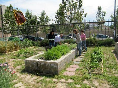 A los niños les encanta tocar y probar las plantas - Heraldo de Aragón | educacion en trastorno generalizado del desarrollo | Scoop.it