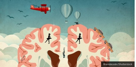 Cosa il nostro cervello dice della nostra professione   Parliamo di psicologia   Scoop.it