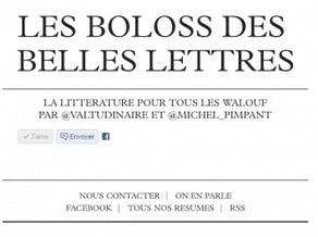 Internet: nouveau laboratoire littéraire?   Langage, néologie et réseaux sociaux   Scoop.it
