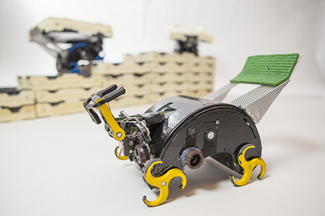 TERMES Project Concludes, Insect Robots Declare Victory | random computing | Scoop.it