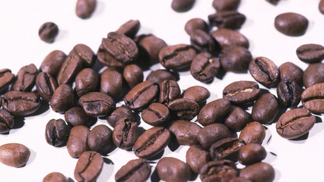 BBC Learning English - 6 Minute English / The story behind coffee | Articles re. education | Scoop.it