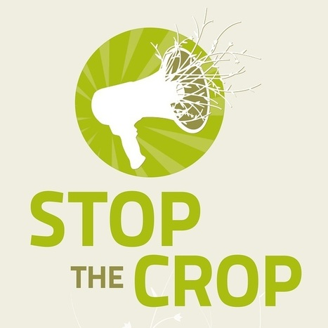 An open door for GMOs? – take action on the EU-US Free Trade Agreement | Should the UK leave the EU? | Scoop.it