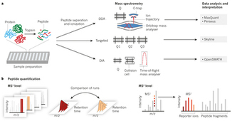 Mass-spectrometric exploration of proteome structure and function : Nature : Nature Research | Mass Spectrometry Daily | Scoop.it