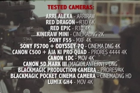 4K Camera Test -See how the latest cameras all compare to one another | VideoPro | Scoop.it