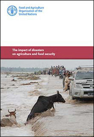 The impact of disasters on agriculture and food security   Sicurezza alimentare   Scoop.it
