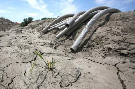Strong El Niño Set to Bring California Drought Relief | California drought | Scoop.it