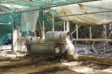 Inondations : Les agriculteurs varois ne baissent pas les bras | Production végétale | Scoop.it