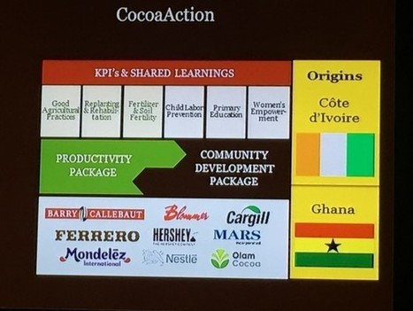 Even doubled income for farmers won't make cocoa sustainable: Mars | Fair and Sustainable Trade | Scoop.it