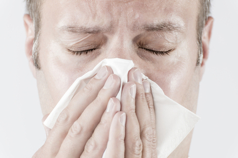Do You Know the Flu Hotspots In Your Office? | BusinessNewsDaily | CALS in the News | Scoop.it