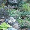 Landscaping Services Landscape Designs Contractors Company kamloops BC