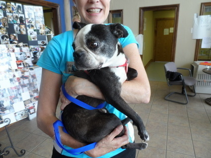 Oliver's Trip to Oklahoma City June 2-8 2013 | Canine Community Reporter Oliver | Scoop.it