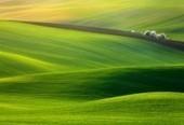 L'écologie s'attaque aux sites internet - Les Smart Grids | Changer le monde | Scoop.it