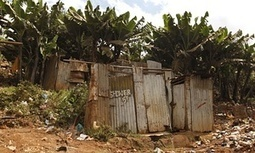 Bum deal: is access to a toilet a human right or a privilege?   Rosalind Malcolm   IB LANCASTER GEOGRAPHY CORE   Scoop.it
